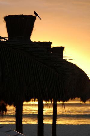 Early morning at the Playa Maya