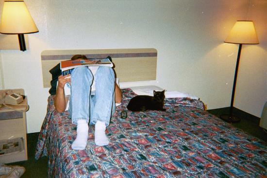 Motel 6 Santa Rosa: Just the standard stuff