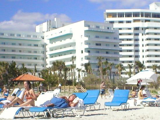 our room picture of hotel riu plaza miami beach miami. Black Bedroom Furniture Sets. Home Design Ideas