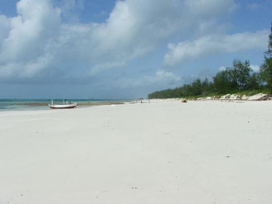 Turtle Bay Beach Club: Beach at Watamu, stunning and not overcrowded