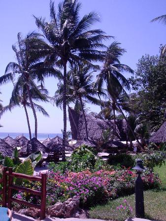 Pinewood Beach Resort & Spa: Gardens