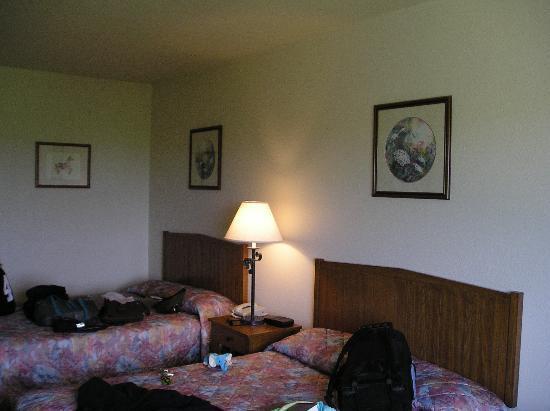 The House on the Rock Inn: room