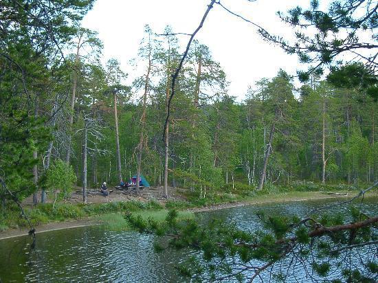 Lemmenjoki National Park: einsamer Zeltplatz