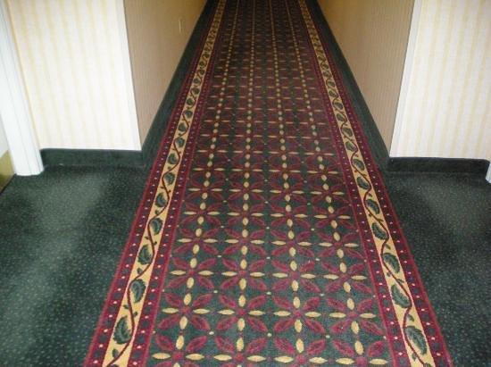 Residence Inn Lansing West: Hallway carpet is nice on the feet
