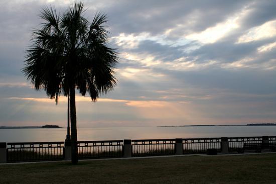 Riley Waterfront Park: (c) Sasha Jade Photography