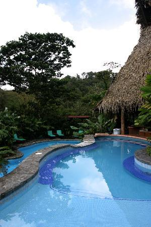 Lost Iguana Resort & Spa: pool at resort, swim up bar