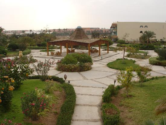The Desert Rose Resort: garden