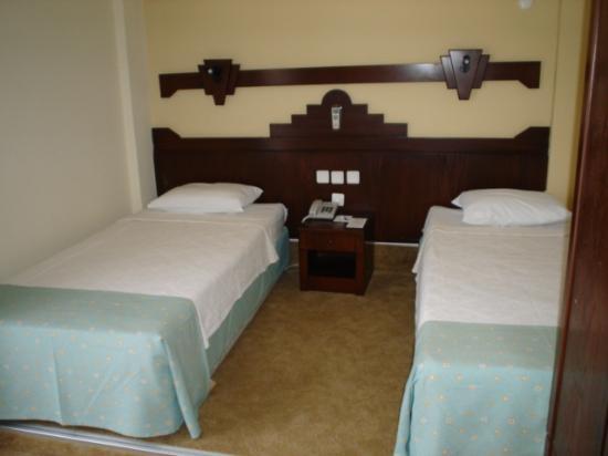 Asdem Park Hotel: room