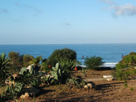 Hotel Fuerte Conil - Costa Luz: The walk to the beach