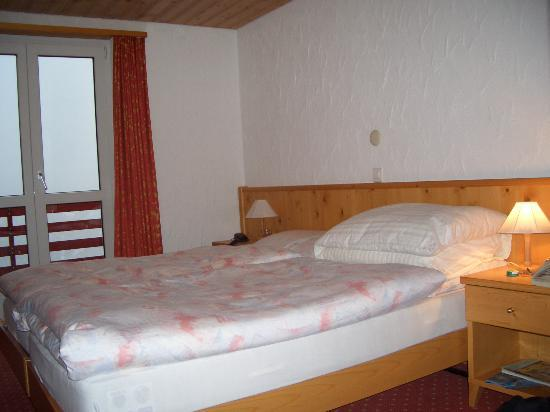 Hotel Edelweiss: Twin room with mountain view