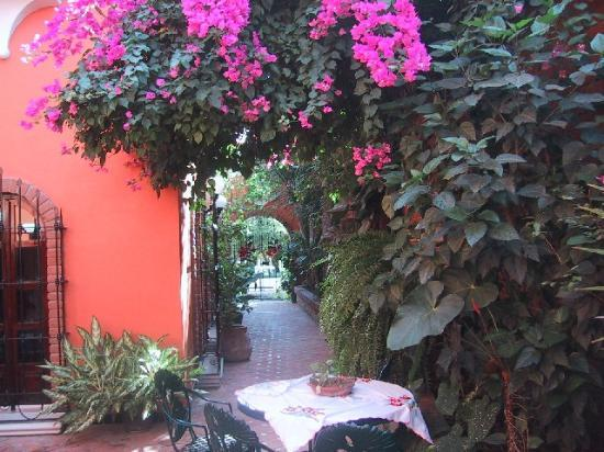 Suites La Hacienda: Lovely pathways