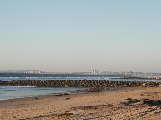 Imperial Beach, Californien: San Diego skyline from I.B.