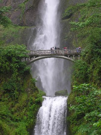Cataratas Multnomah: Multnomah Falls