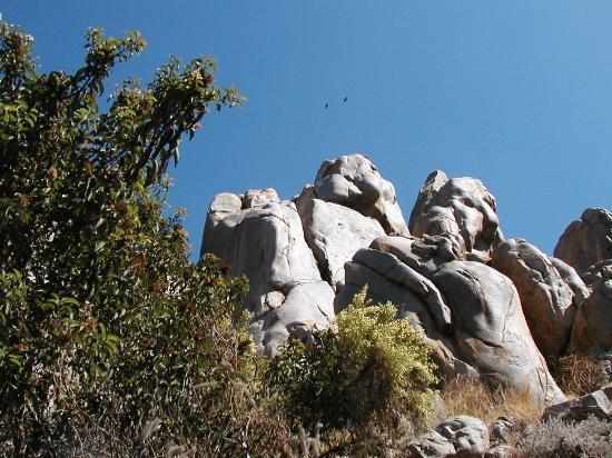 Foto de Mission Trails Regional Park
