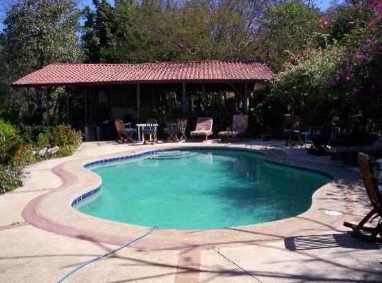 Rancho Armadillo Estate: The beautiful pool