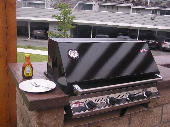 Casa Loma Lakeshore Resort: Gas BBQ for your cooking pleasures!
