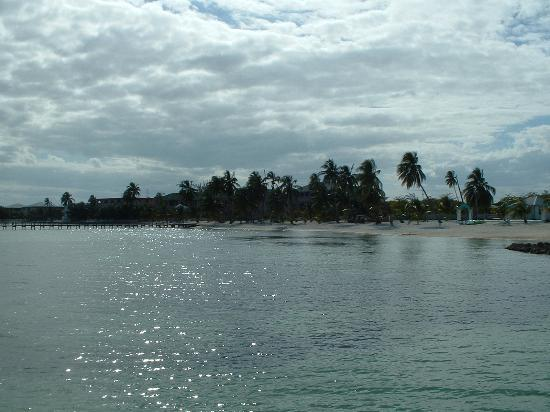 Caribe Island Condos : Another Beach View Photo