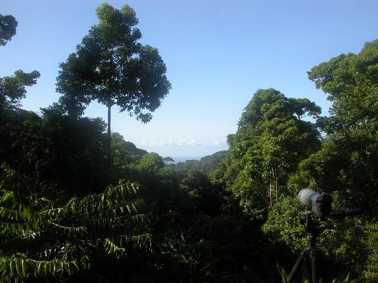Luna Lodge: a view from main lodge building