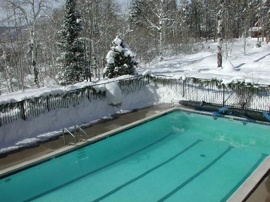 Scandinavian Lodge: The pool, from our room