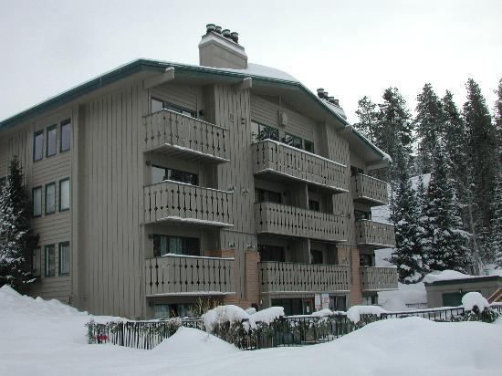 Scandinavian Lodge: The Scandinavian