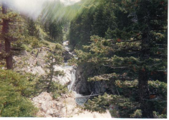 Crypt Lake Trail: Waterfall along the hike
