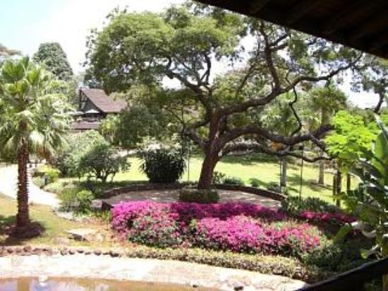 Safari Park Hotel: safari park gardens