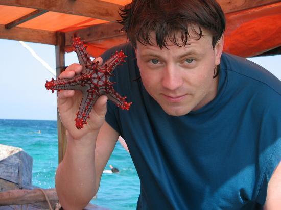 Pongwe Beach Hotel: Starfish!