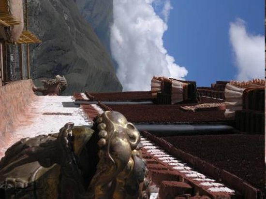 Lhasa, Chine : Snow lions on the roof of the Potala