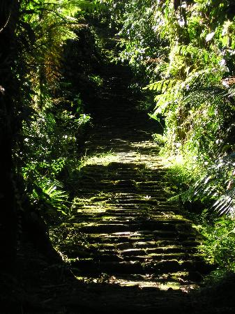 Santa Marta District, Colombia: Have fun with these stairs after a day of hiking