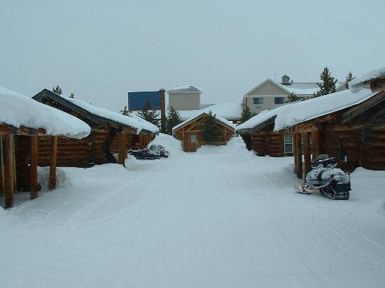 Hibernation Station: Snow covered cabins