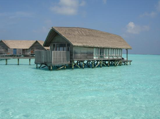 COMO Cocoa Island, The Maldives: our one bed villa