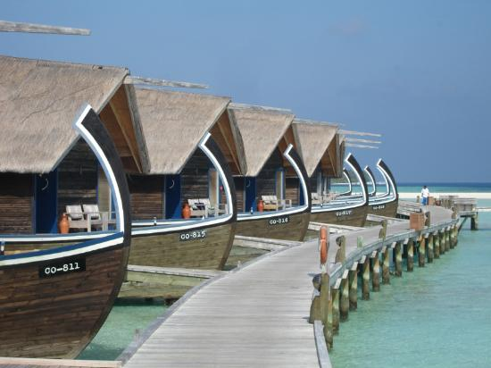 Cocoa Island by COMO : dhoni rooms