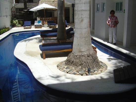 El Hotelito Photo