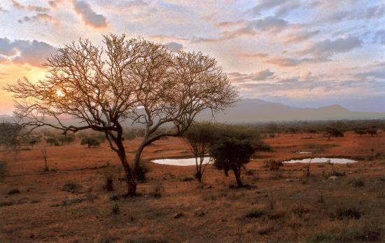Tsavo National Park West Foto