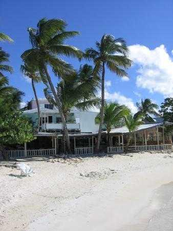 Siboney Beach Club: Hotel (at back) and Coconut Grove from the beach