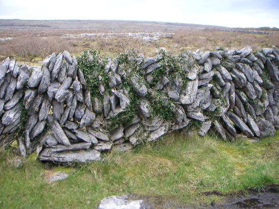 Daly's House: The Burren