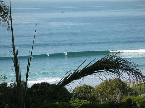 Wave Crest Resort: I live Here