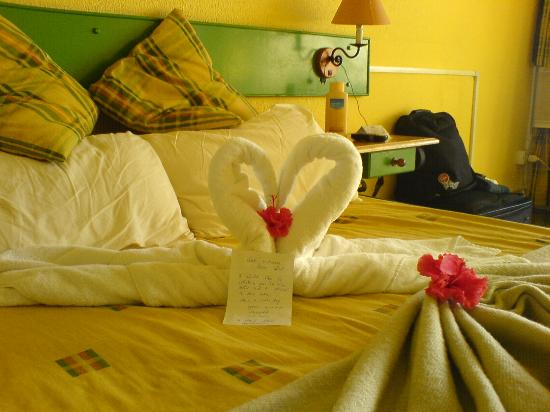 Hotel El Bosque: The maid's daily creation