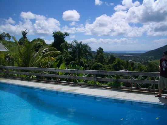 La Paloma Guest House: Pool.