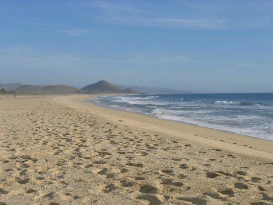 Las Palmas Tropicales: Not Cabo!