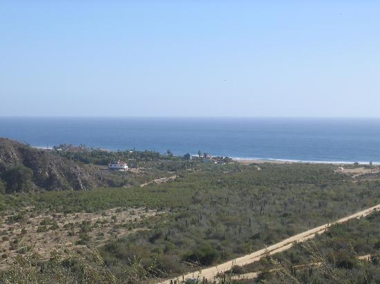 Las Palmas Tropicales: San Pedrito Aerial