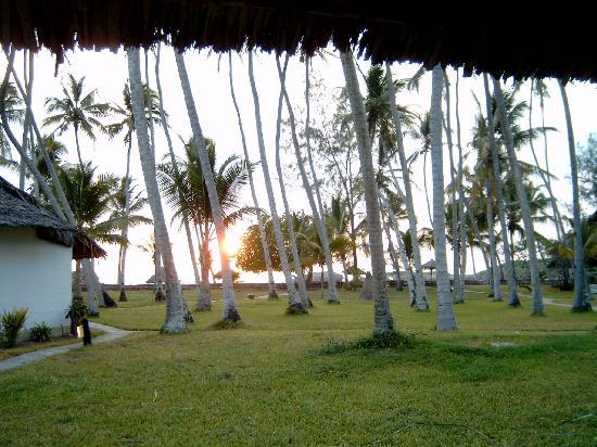Watamu Beach : alba al WatamuBeach