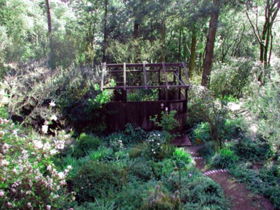 Rosemary Cottages: Hot tub enclosure and garden