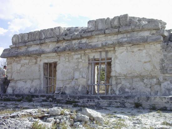 Ruines El Rey (Zona Arqueologica El Rey) : ruin