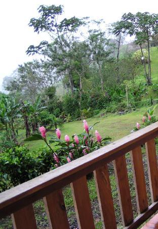 Hotel Fuego Arenal: Back porch