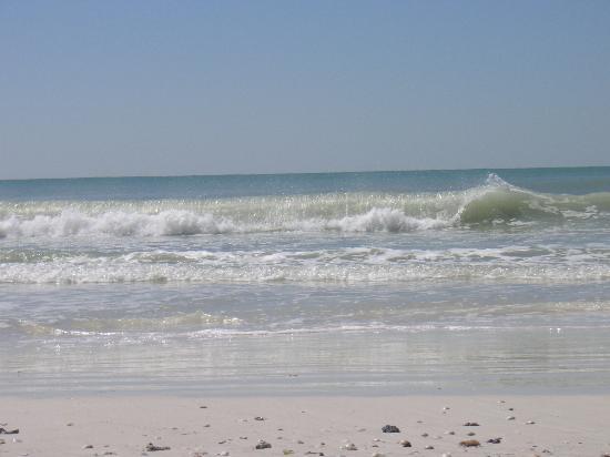 Haleys Motel and Resort: The beach