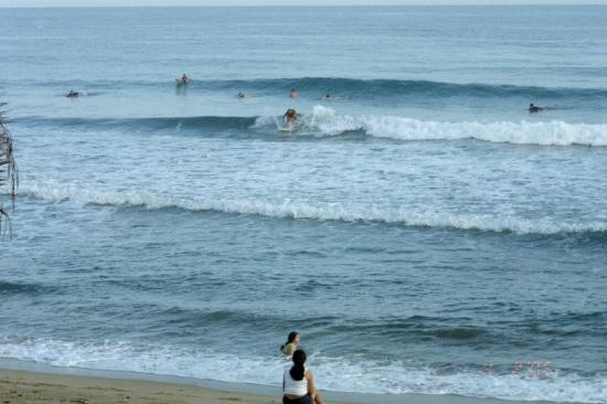 Rincon Surf and Board: the surf