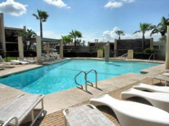Pet Friendly Resorts In South Padre Island Tx