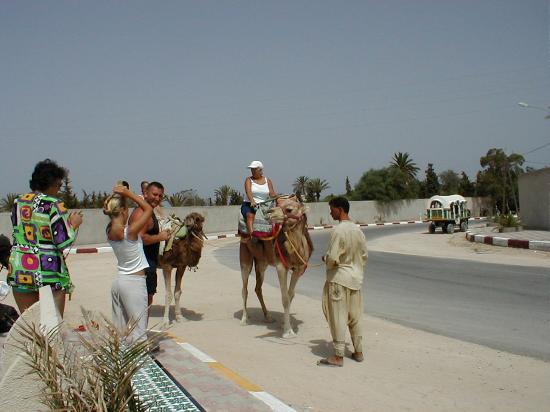 Kerkennah Islands, Tunisia: ride Em cowgirl