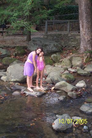 Brookside Resort: In the stream